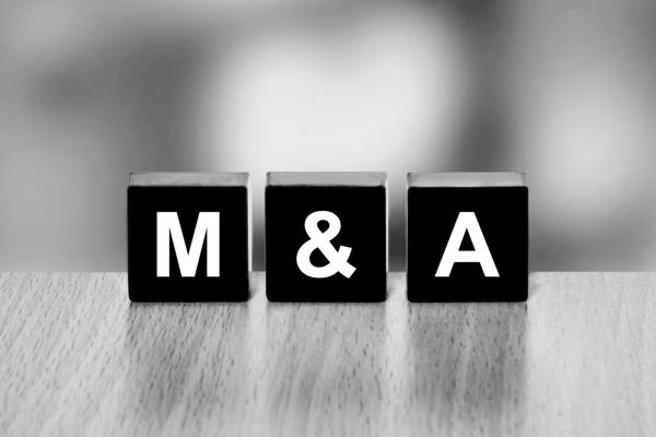 Senior M&A Lawyer